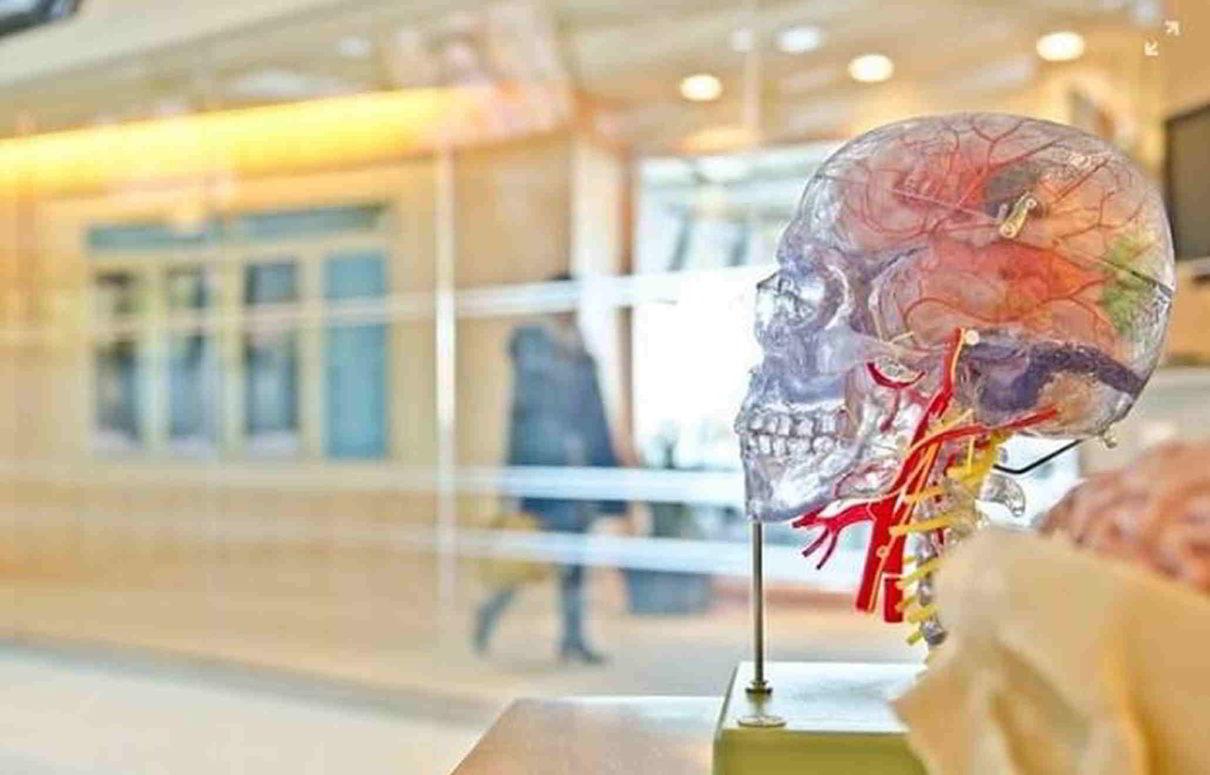 Check-up: avanços científicos que garantem mais saúde