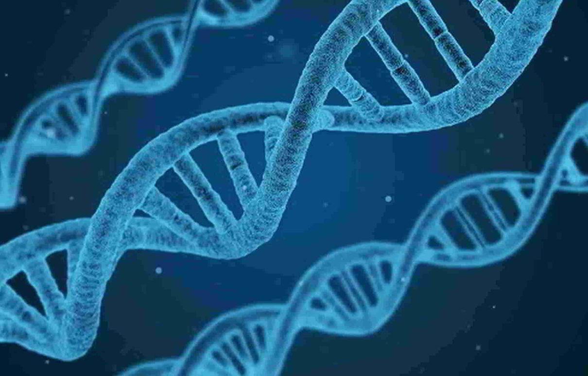 Saiba o que os testes genéticos podem fazer por sua saúde